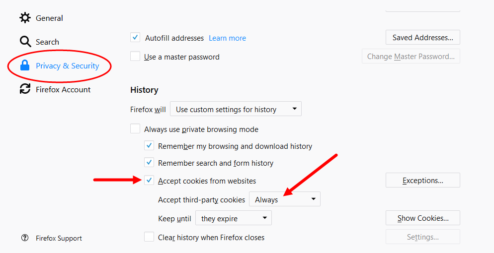 Firefox privcay and security page with custom history settings configured as described